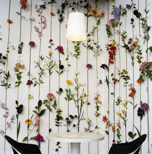 20 Creative Backdrop Ideas Hative