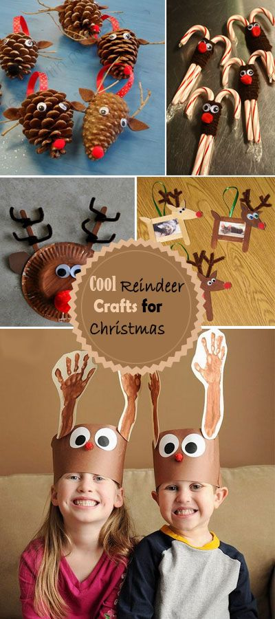 Cool Reindeer Crafts for Christmas!