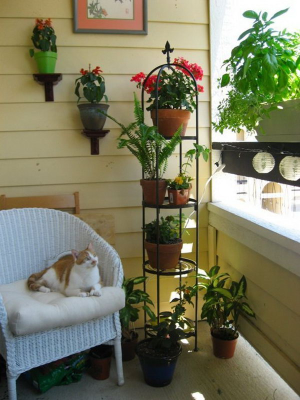 Use various levels to place the plants for your small balcony garden. This not only helped to save room, but it also maximized the amount of sun exposure for the plants.