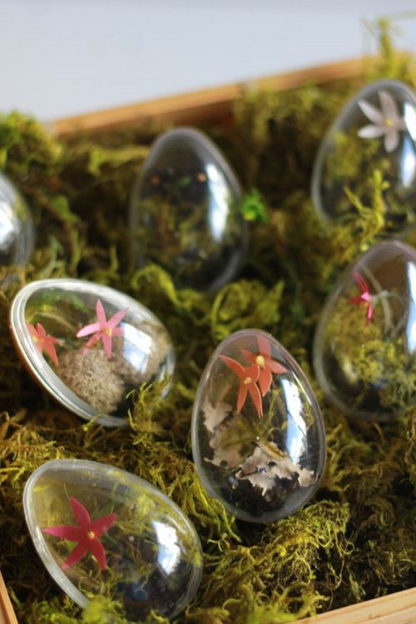 DIY Easter Egg Terrariums. This Easter egg terrarium would be another cool artwork full of creation sparks for your Easter party.