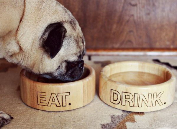 Pet Dishes. If someone has a new pet like a dog or a cat, then it is a good birthday gift idea to give him or her a set of beautiful pet dishes.