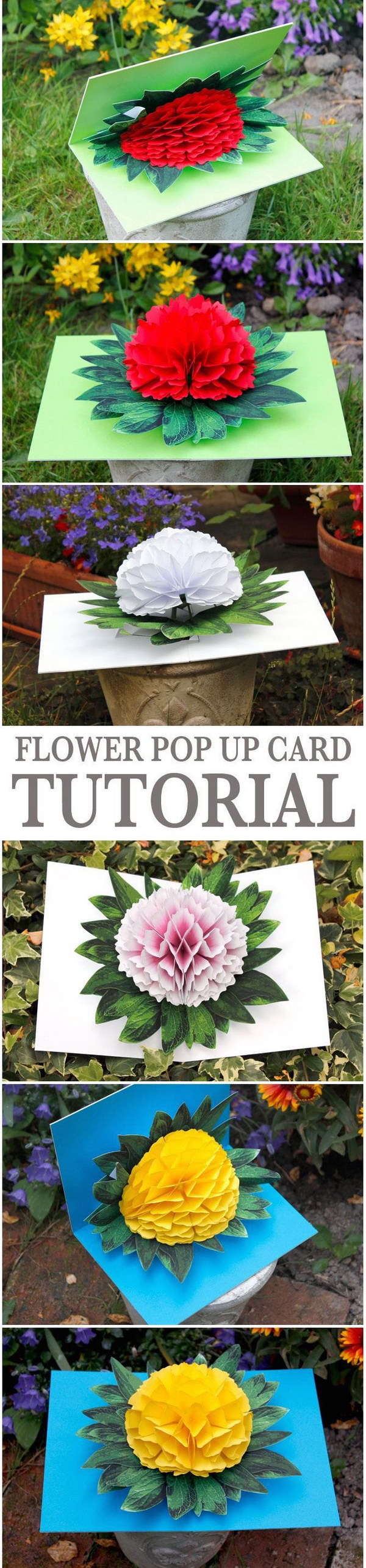 Flower Pop up Card.