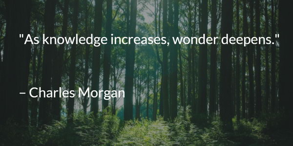 Knowledge Graduation Quote. As knowledge increases, wonder deepens. This quote comes from Charles Morgan. Even if you graduate, always keep curious about knowledge and learning as no one can carry your knowledge away.