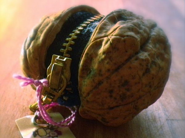 Walnut little purse. This is a little purse craft made from a walnut. It is functional fro coins and stylish.