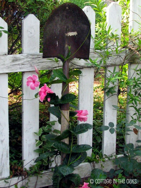 The old or even broken shovels can be turned into trellises in one of the rose beds in the garden.