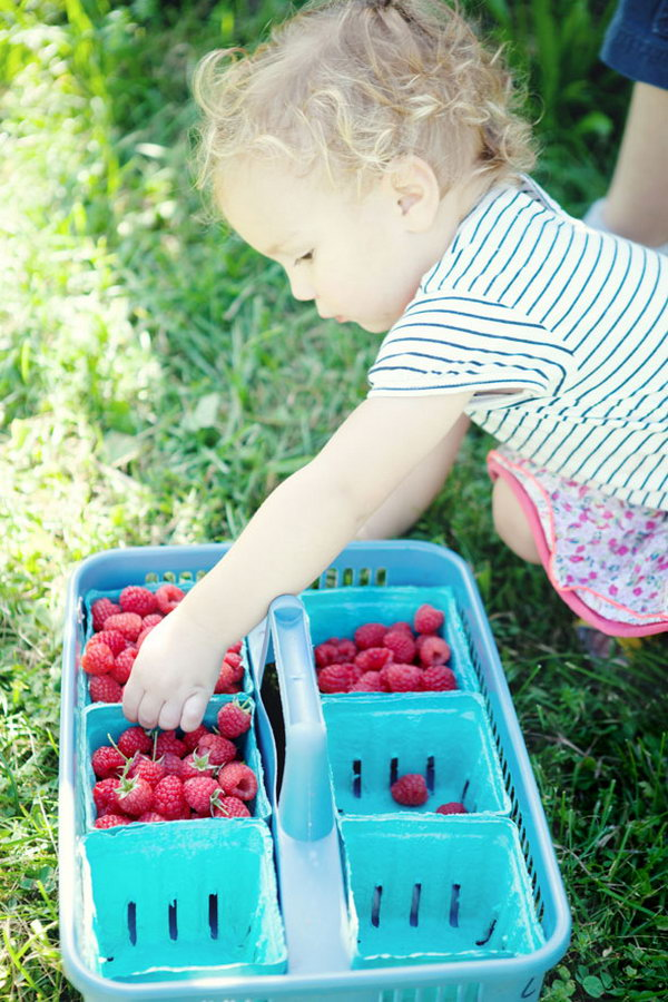 Berry Picking. Get together to pick berries at the time they are popping up to enjoy the crisp flavor of fresh fruit. You can also have a lot of fun picking it. It's a fantastic way to enjoy your summer party outdoor with a lot of pleasure.