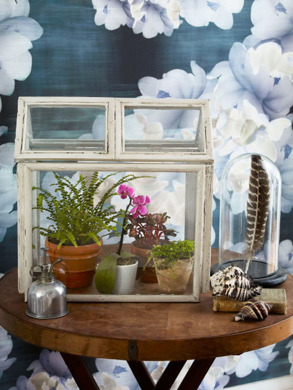 DIY Mini Terrarium. You can make a beautiful desktop terrarium from picture frames that you can get at the Dollar Store for less than $1 each. You will also need a few hours because this project is a bit time consuming. The end result however, is gorgeous.