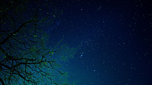 Identify the constellations. It's so fun to look at the stars and identify the constellations in the evening with your buddy. If both of you can identify it, you are meant to be lovers.