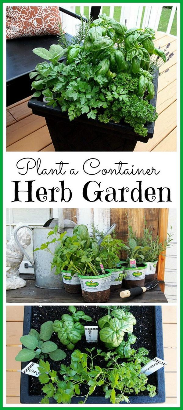 35+ Creative Garden Hacks & Tips That Every Gardener Should