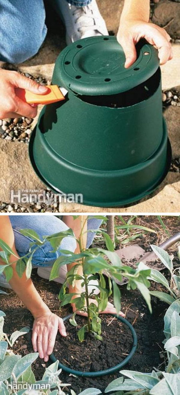 Prevent Invasive Plants from Spreading Using a Plastic Pot