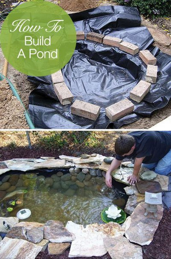 Create a Free-Form Backyard Pond Easily, Cheaply and Beautifully