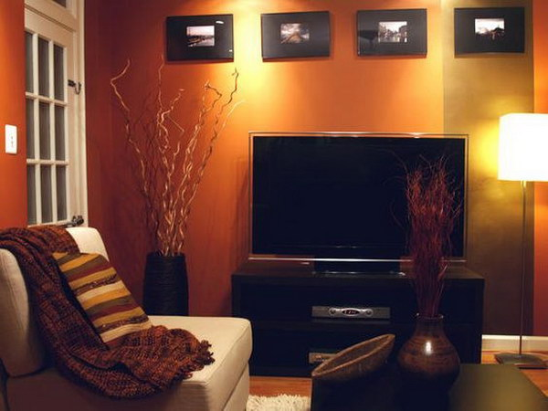 Copper Orange Living room Wall.