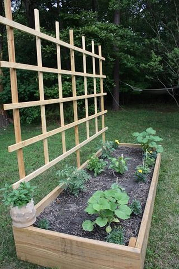 DIY Raised Bed With Trellis.