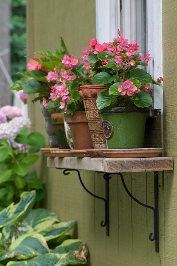 Window Box Alternative Pots on a Shelf.