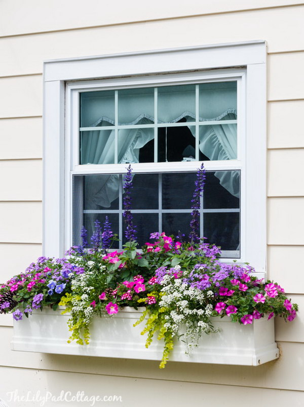 25 creative window boxes hative for Window design box