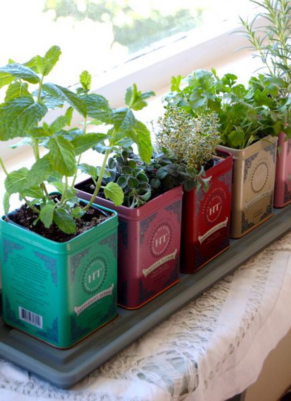 Tea Tin Window Boxes.