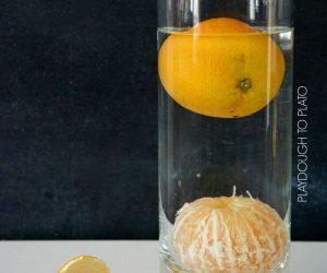 Easy & Cool Science Experiments For Kids
