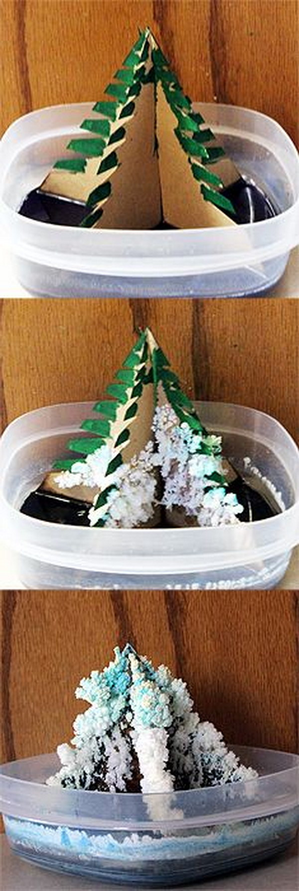 Easy cool science experiments for kids hative grow your own christmas tree with this fun christmas tree science experiment forumfinder Choice Image