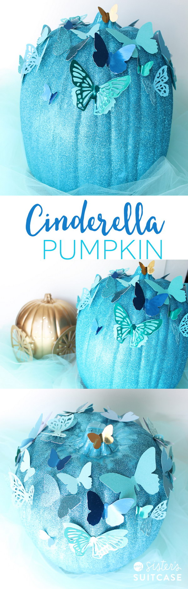 Cinderella Butterfly Pumpkin.