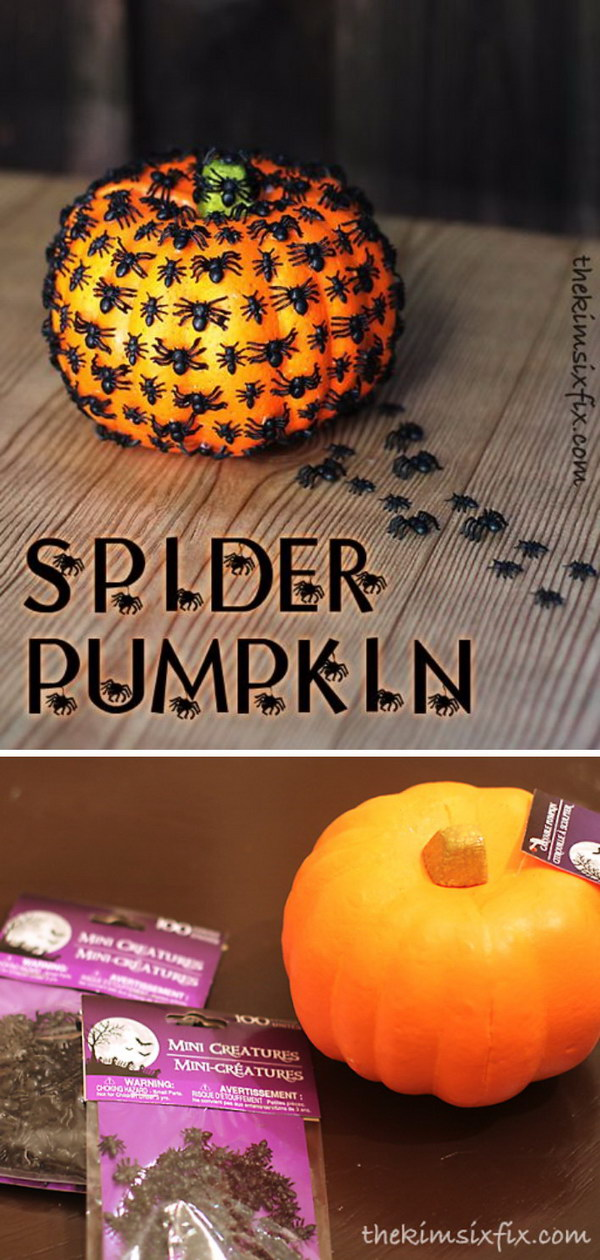 DIY Creepy Crawly Spider Pumpkin.
