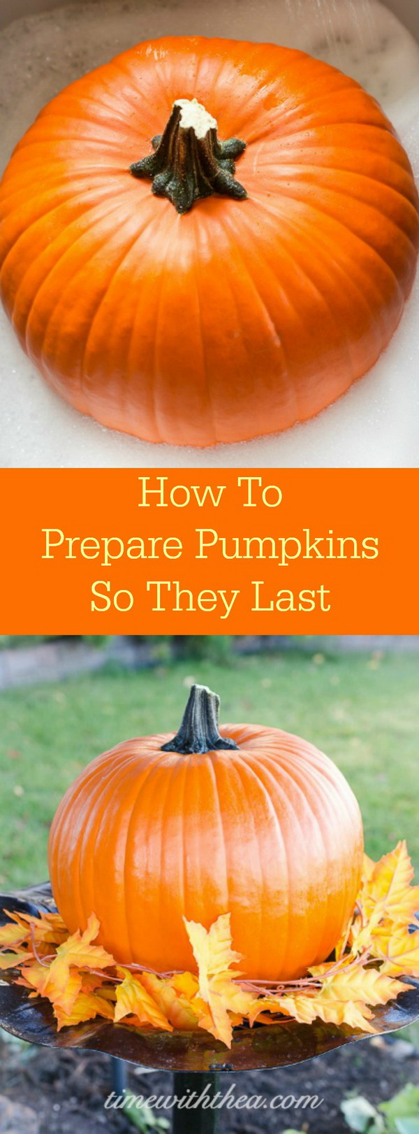 How To Prepare Pumpkins So They Last.