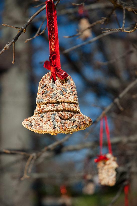 DIY Birdseed Christmas Ornaments.