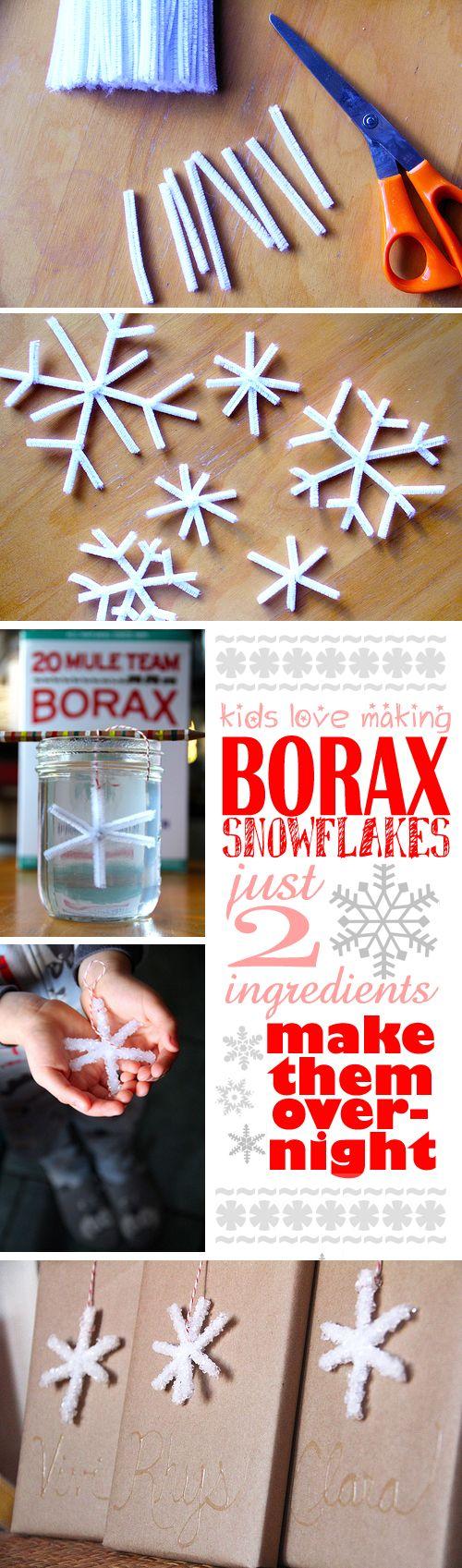 Easy Borax Snowflakes.