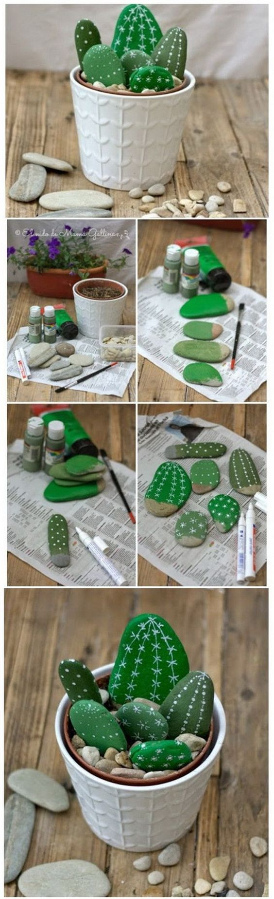 Painted Cactus Rocks.