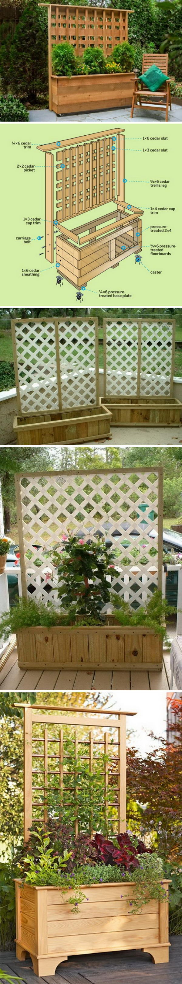 DIY Privacy Planter with Trellis.