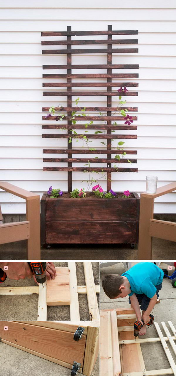 DIY Trellis and Planter Box.