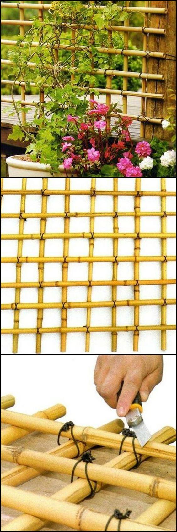 DIY Bamboo Trellis.