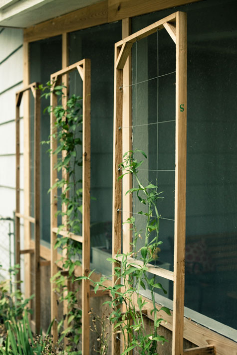 Trellises From Cedar Boards And Wire Cabling
