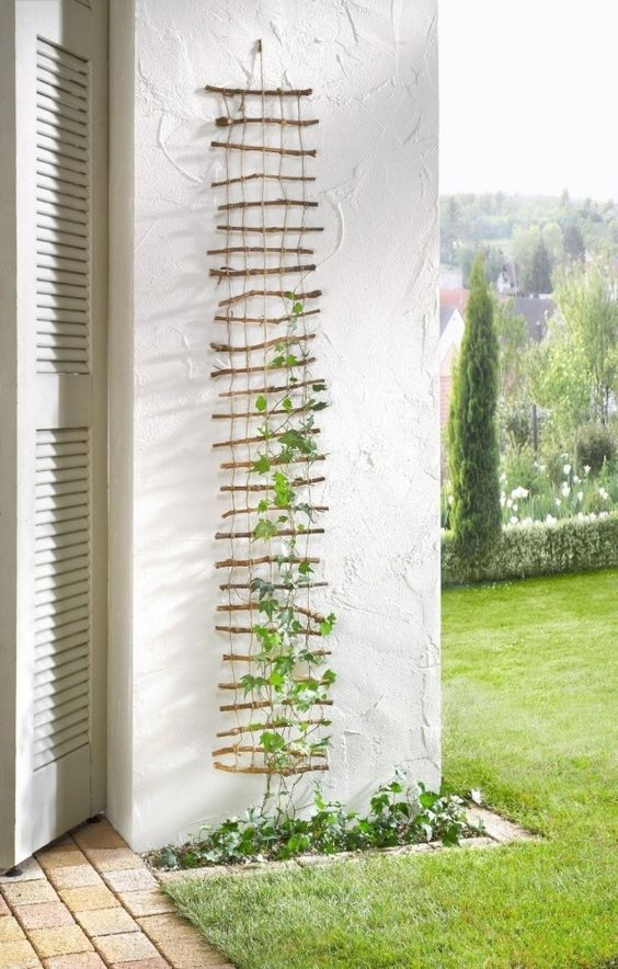 Homemade Twig Trellis.