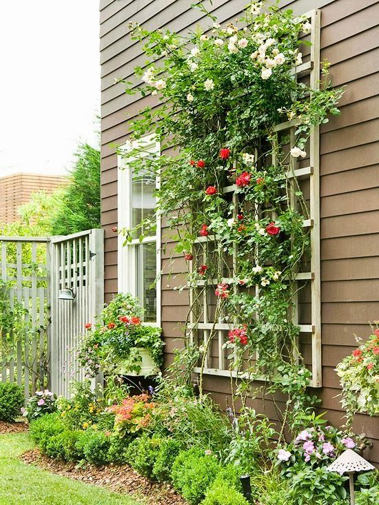 Wall Mounted Outdoor Trellis.