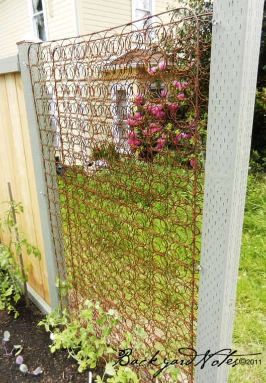 Creative Way To Recycle  Old Mattress Springs As Trellis For Your Garden.