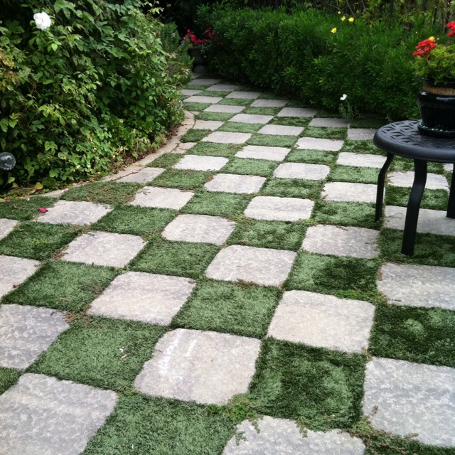 Checkerboard Pathway By Using Square Patio Stones And Then Plant The Earth  In Between
