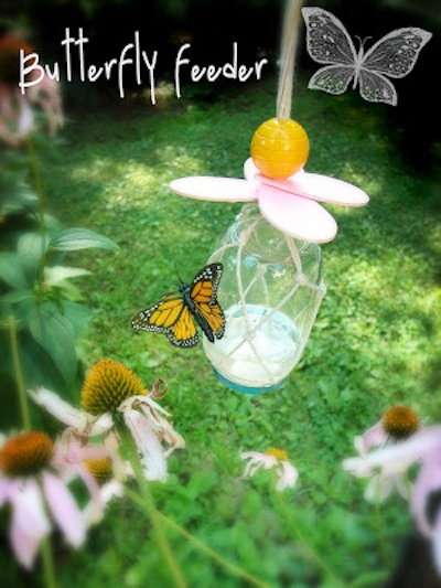 DIY Butterfly Feeder.