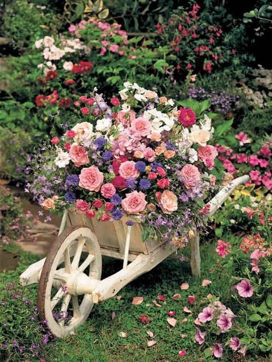 Fantasy Wheelbarrow Planters.