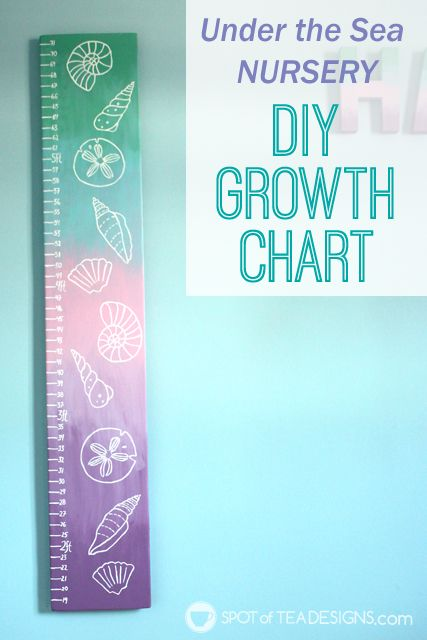 DIY Seashell Growth Chart.